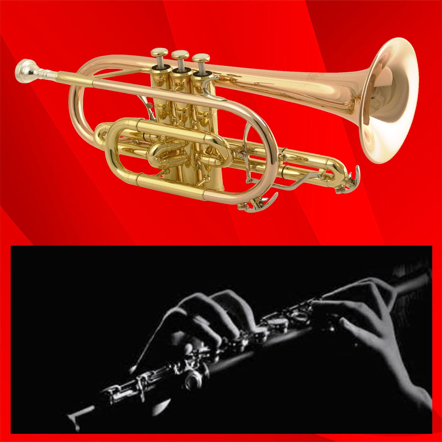Kuğu Sanat Özel Konservatuvarda Flüt, Saksafon, Klarnet Trompet Dersleri